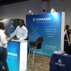 cigfaro-audit-risk-indaba-2019-3